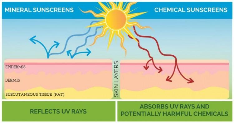 mineralvschemicalsunscreens-e1431525471489