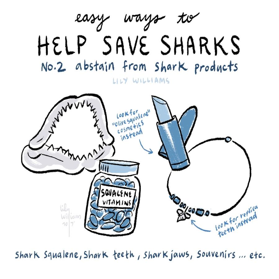 SharkWeek2017_5002